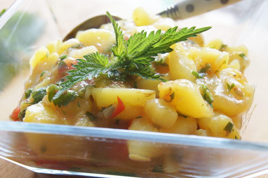 Kartoffelsalat mit Brennnesseln ganz einfach