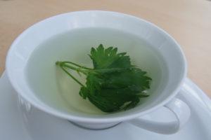 Natürlich und gesund-frischer Tee aus Brennessellblättern